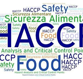 HACCP — co to jest i czy muszę go mieć? 21