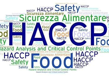 HACCP — co to jest i czy muszę go mieć? 29