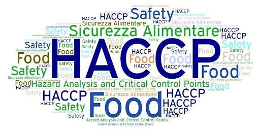 HACCP — co to jest i czy muszę go mieć? 11